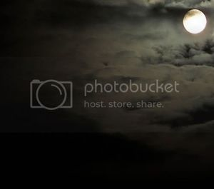 full moon picture by AmberLynn488 - Photobucket
