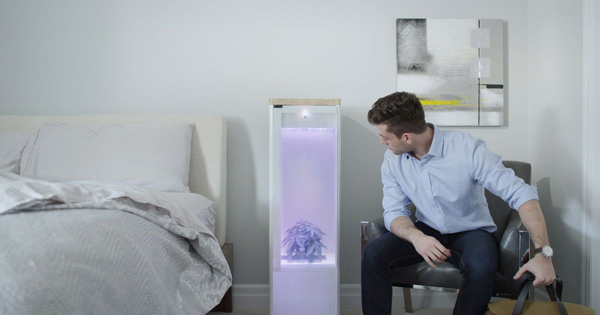 Grow your crops indoors with the Grobo automated garden — now shipping