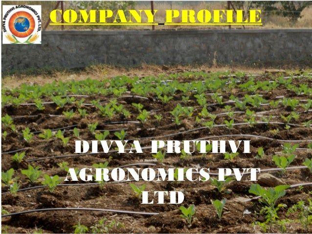 Ruth Pune Pics