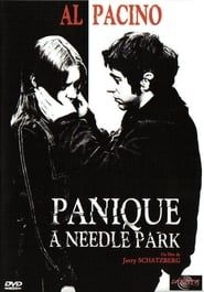 Panique à Needle Park streaming vf