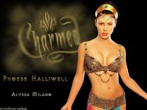 Charmed  Charmed Wallpaper (136568)  Fanpop fanclubs