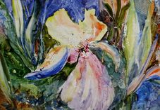 Bright Iris Painting by Grace Rankin  Bright Iris Fine Art Prints and