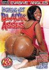 Mix Of Big Ass Videos From Dvd Box � Photo, Picture, Image and