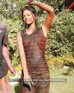 Holi Wet Cloths Hot Pics � Photo, Picture, Image and Wallpaper