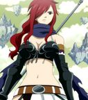 FT Popularity Poll [39] Knightwalker Erza  Naruto Forums