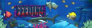 Feeding Frenzy Download for PC | WildTangent Games