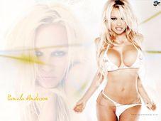 Pamela Anderson  Pamela Anderson Wallpaper (1092460)  Fanpop