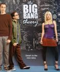 the big bang theory cast  The Big Bang Theory and HIMYM Photo