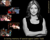 kate todd  The Angels of NCIS Photo (13989768)  Fanpop fanclubs