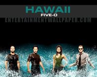 Hawaii FiveO  Hawaii Five0 (2010) Wallpaper (17708218)  Fanpop