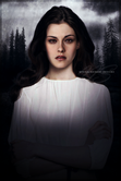 Bella Swan  Bella Swan Fan Art (22507513)  Fanpop fanclubs