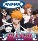 bleach  animax Photo (25203058)  Fanpop fanclubs