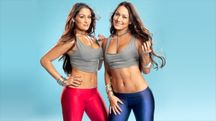The Bella Twins  WWE Divas Photo (29267689)  Fanpop fanclubs