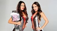 Farewell to the Bella Twins  WWE Photo (30687147)  Fanpop fanclubs