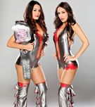 The Bella Twins  WWE Divas Photo (30622996)  Fanpop fanclubs