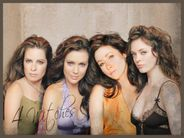 The Charmed Sisters  Charmed & The Secret Circle Wallpaper (32240076