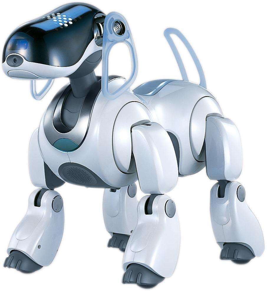 Jasmine Robo Doggy