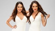 The Bella Twins  WWE Divas Photo (33937599)  Fanpop fanclubs