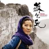 True Legend, De Yuen Woo-Ping : Cinq Posters