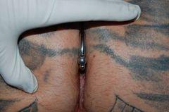 Viena Art Studio  Galeria prac  Intymne  Reverse anal piercing