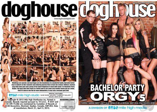 Bachelor Party Orgy 5 Xxx