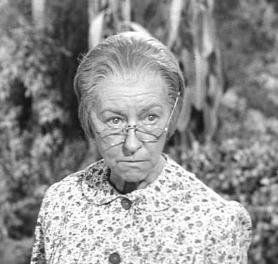 Granny Beverly Hillbillies Character