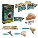 Amazon.com: Shark Teeth Digging Kit  Excavate 3 Real Shark Teeth