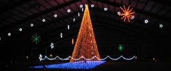 Shadracks Christmas Light ShowWe do this  | Places we've been a