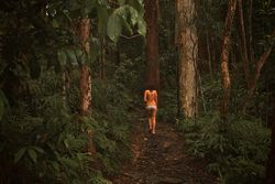 naked forest | Wanderlust