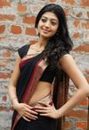 Pranitha Subhash | Sandalwood