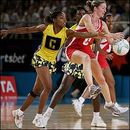 FamousWhy.com Forum: The Netball  FamousWhy.com Forum