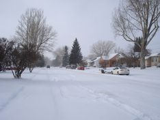 Laramie, WY : Garfield St , Laramie photo, picture, image (Wyoming) at