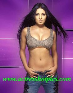 Celina Jaitley sexy navel Photos spicy boobs pics - Celina Jaitley