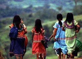 favor of Costa Rica's Bribri Indigenous Group | Repeating Islands