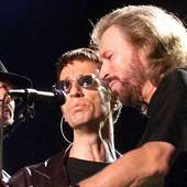 Bee Gees 13