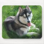 Siberian Husky Dog Mouse Pad | Zazzle.co.uk