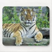 Tiger, Siberian Mouse Pads from Zazzle com