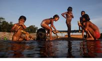 Children from Bare tribe play and eat sugar cane on the Negro River in