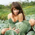 Young nude woman sit in cabbage field