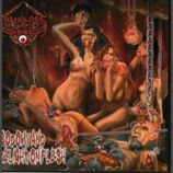 Pathologic Noise  Sodomy and Delight on Flesh  CD