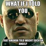 Look into the Amanda Todd hysteria