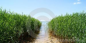 Azov Sea Royalty Free Stock Photo - Image: 15218495