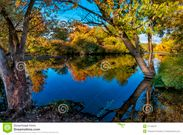 Boise River Autum Trees Royalty Free Stock Images  Image: 27130379