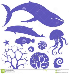 Ocean  Set  Isolated objects on white background  Vector illustration
