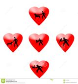 Pet Lovers Stock Images  Image: 33707024
