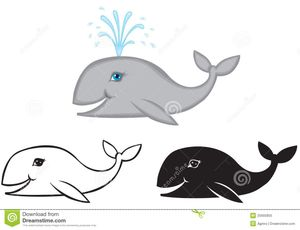 Set Of Images Whale Royalty Free Stock Photo - Image: 25905855