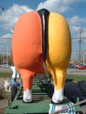 in Indiana  This large cow butt is located somewhere in Indianapolis