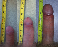 Ficheiro:Flaccid penis to erect compare png � Wikip�dia, a