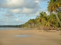 File:Mayaro Beach; Trinidad & Tobago jpg  Wikimedia Commons