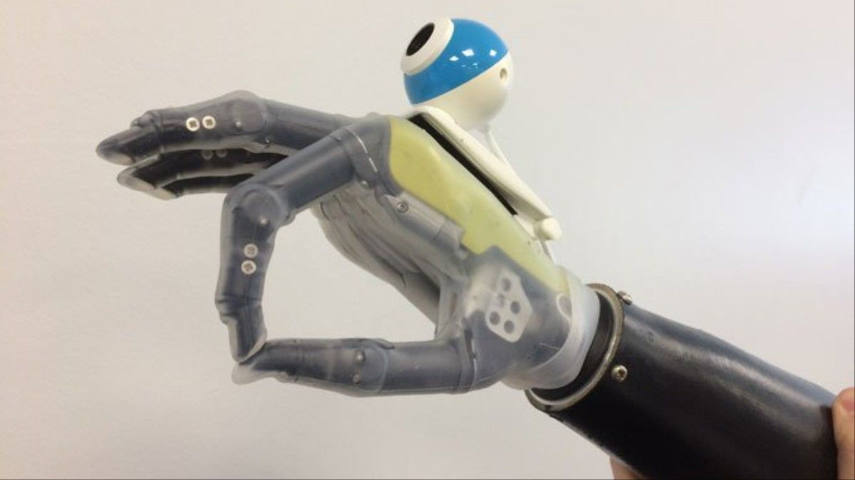 This Bionic Hand Uses AI to Grab Things Automatically